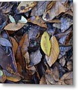Fallen Leaves Metal Print