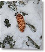 Fallen Pine Cone Metal Print
