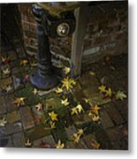 Falling At Your Feet Metal Print