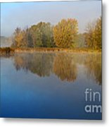 Falling For Reflections... Metal Print