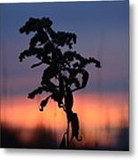 Falls Dying Breath Metal Print