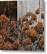 Fall's Fleeting Memories Metal Print