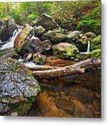 Falls On Blood Mountain Creek Metal Print