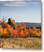 Fall's Splendor - Casper Mountain - Casper Wyoming Metal Print