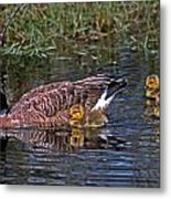 Family Affair Metal Print