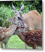 Family Hug Metal Print