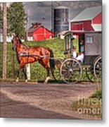 Family Outing Metal Print