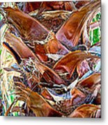 Fan Palm Trunk In Andreas Canyon In Indian Canyons-ca Metal Print