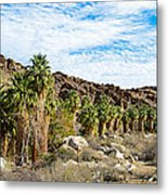 Fan Palms Line The Creek In Andreas Canyon In Indian Canyons-ca Metal Print