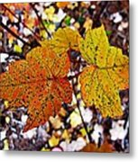 Fancy Fall Leaves Metal Print