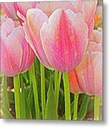 Fantasy In Pink - Tulips Metal Print
