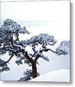 Fare-well Pine Tree Metal Print