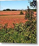 Farm Along Confederation Trail-pei Metal Print