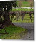 Farm And Vineyard Metal Print