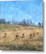 Farm Days 2 Metal Print