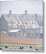 Farm Fed Metal Print