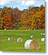 Farm Fresh Hay Metal Print