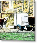 Farm Land Metal Print