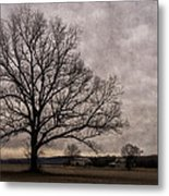 Farm Land Near Matson Mo Dsc00412 Metal Print