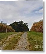 Farm Lane Metal Print