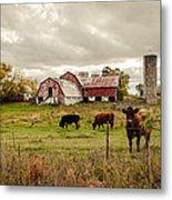 Farm Living Metal Print