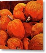Farm Market Pumpkins Metal Print
