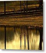 Farm Pond Reflections Metal Print