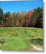 Farm Road In Autumn Metal Print