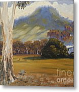 Farm With Large Gum Tree Metal Print