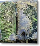 Farmed Oysters Metal Print