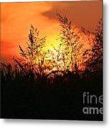 Farmer's Sunrise Metal Print