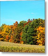 Farmfield Fall Metal Print