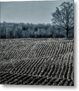 Farmfield Furrows Metal Print