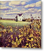 Farmhouse And Grapevines Metal Print