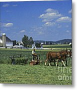Farming The Old Order Way Metal Print