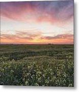 Farmland Sunset 2 Metal Print