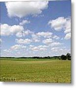 Farmland  Metal Print