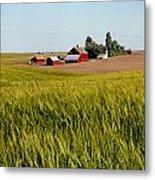 Farmlands Near Davenport Metal Print