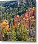 Farview Point Overlook Metal Print