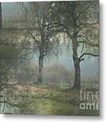 Fascinating Landscapes  Metal Print