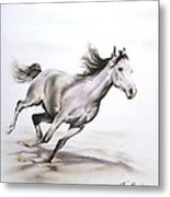 Fast In The Spirit Metal Print by Tamer and Cindy Elsharouni