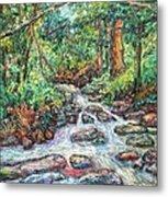 Fast Water Wildwood Park Metal Print by Kendall Kessler