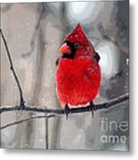 Fat Cardinal In The Snow Metal Print