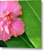 Favorite Flower 2 Metal Print
