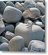 Feather And Cobbles Metal Print