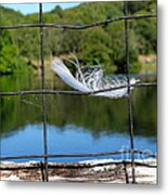 Feather And Fence Metal Print