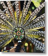 Feather Crown Metal Print