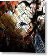Feathered Abstract 2 Metal Print