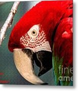 Feathered Friend Metal Print