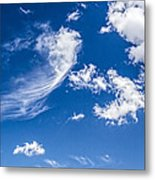 Feathertail Cloud Metal Print